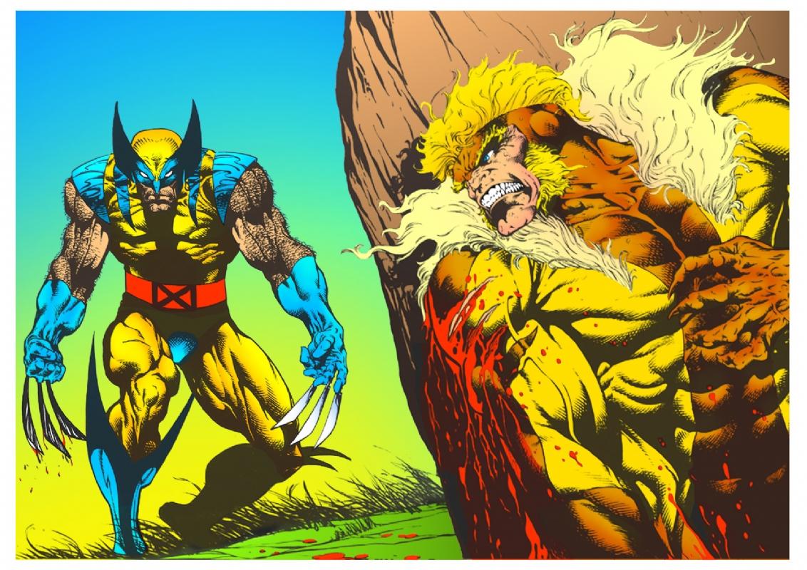 0b499663b7f wolverine vs sabretooth, in david david's collection of comics Comic ...