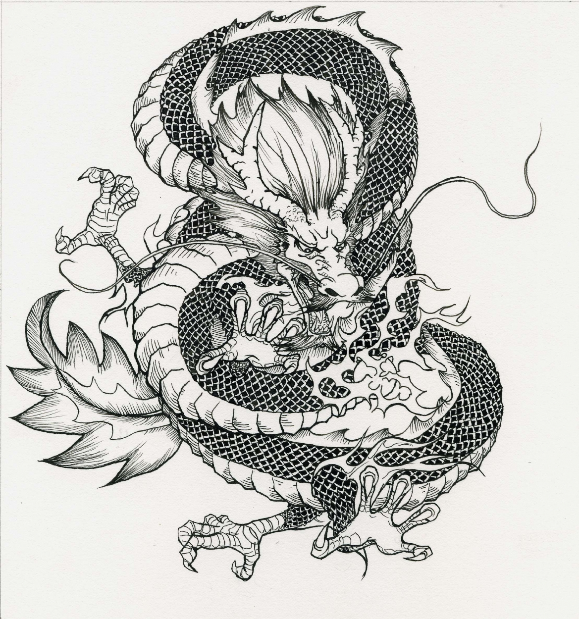 chinese dragon in raymond kuang s personal art comic art gallery room