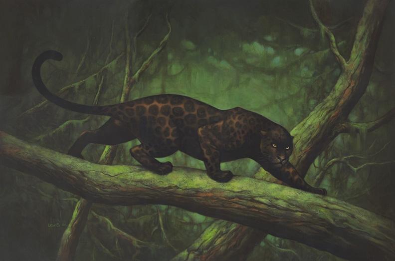 Jaguar Predator Black Animal Muzzle Art Wallpaper: Black Jaguar, In Scott R.'s 1) Big Cats Comic Art Gallery Room