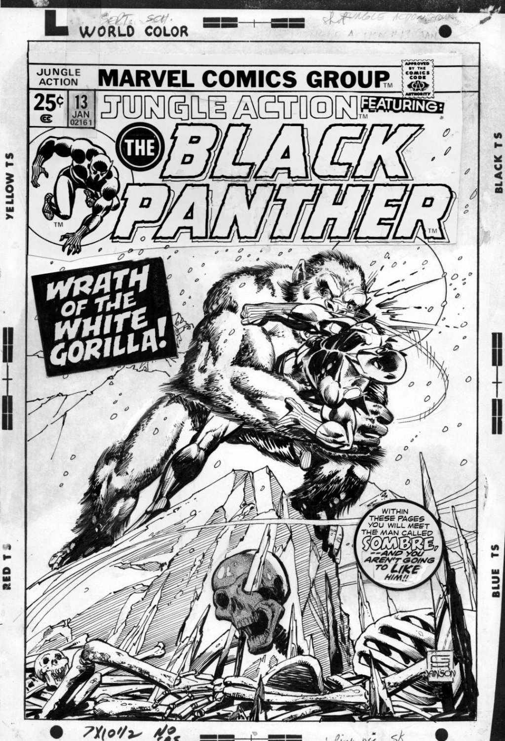 Kane Gil Jungle Action 13 Cover Classic Black Panther Series Vs