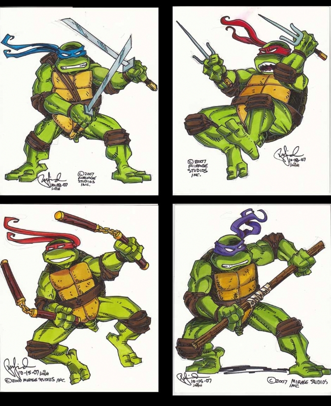 teenage mutant ninja turtles color action shots by peter laird in